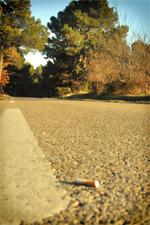 Mégot de cigarette sur la route