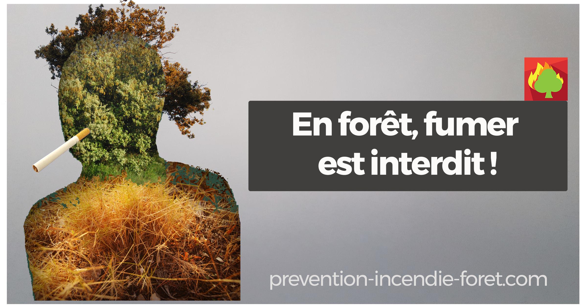 En forêt, fumer est interdit !
